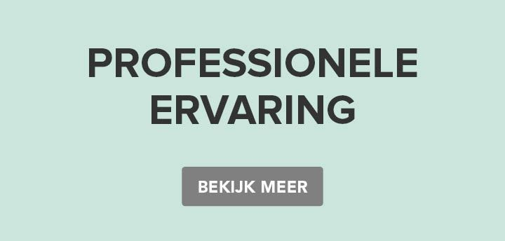 Creative Learning - professional experience